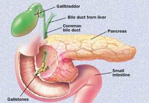 liver symptoms breathing