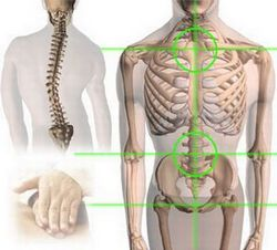 Types Of Spine Surgery India, Best Spine Surgery In India, Spine Surgery procedure, India Hospital Tour, Back Surgery India